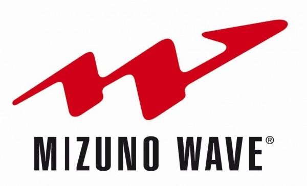 wave-logo-jpg521c4e677dca1